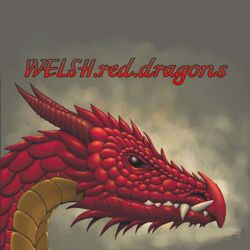 WELSH.red.dragons's logo