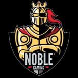 NG backup logo