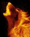 Supah Hot Fiyah logo