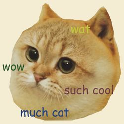 The CateDoge Team's logo