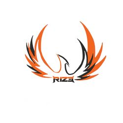Team RiZe's logo