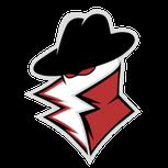 Private eSports. logo