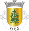 Feijó City's logo
