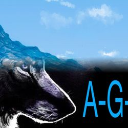 AGS's logo