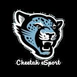 Cheetah eSports logo