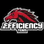 Efficiency Team RL logo