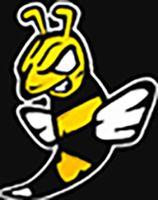 RealAshtonArmy logo