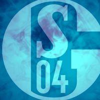 DomiS04 logo
