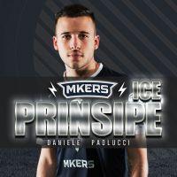 IcePrinsipe  logo