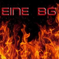 EINE logo