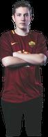 Roma Zimme logo