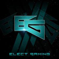 Electgaming logo